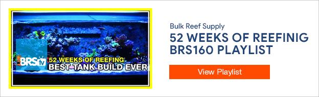 52 Weeks of Reefing - BRS160 Playlist