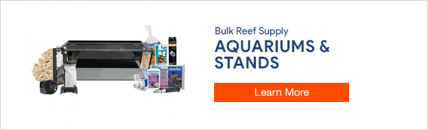 Buy aquariums and stands