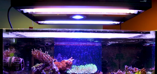 Aquatic Life T5/LED Hybrid light fixture