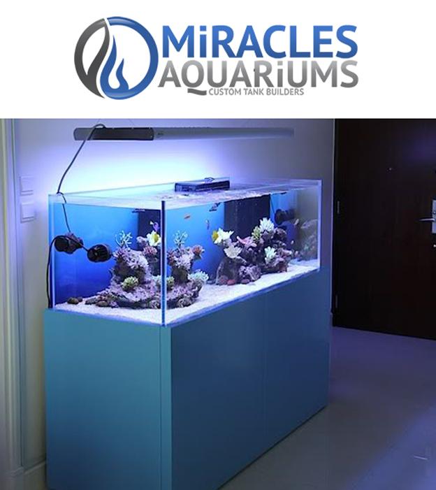 Miracles Aquariums