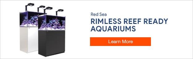 Red Sea Rimless Reef Ready Aquariums
