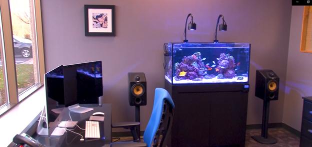 Ryan's office Reef Savvy tank