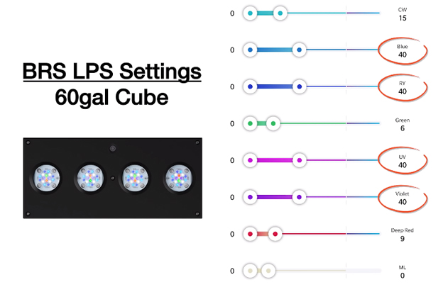 LPS Settings for a 60 gallon cube using Hydra 64 LED Light