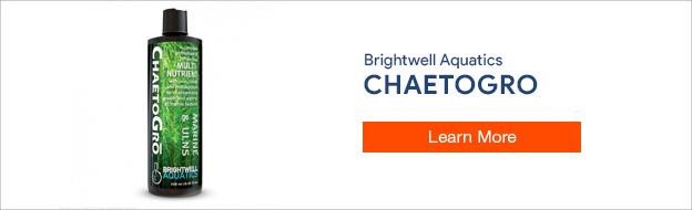 Brightwell Aquatics ChaetoGro