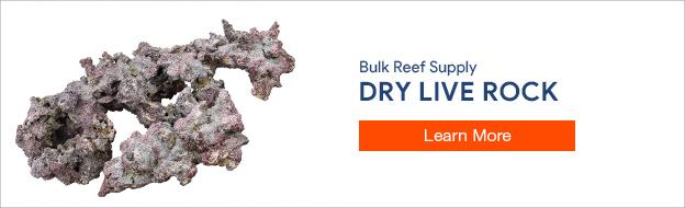 Dry Live Rock