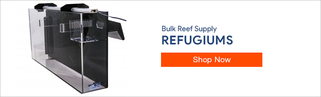 Shop Refugiums