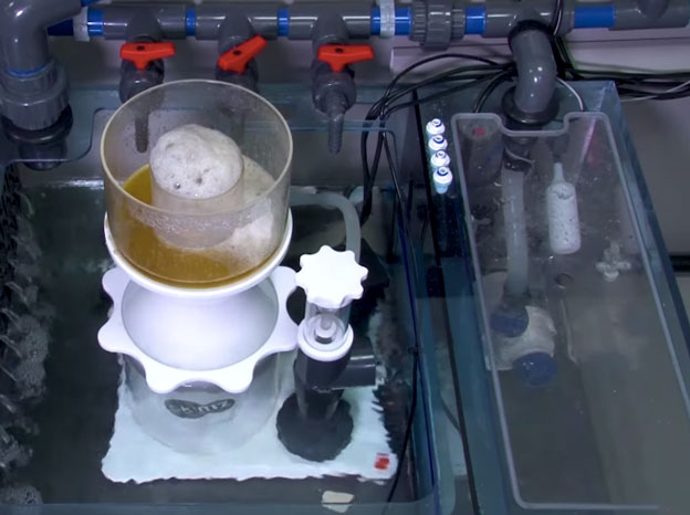 Sump filtration with protein skimmer