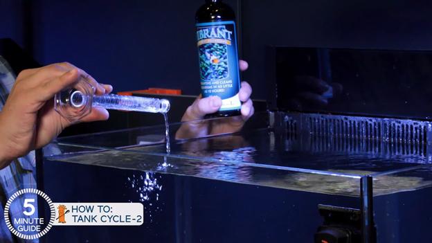 Dosing Vibrant into a reef tank