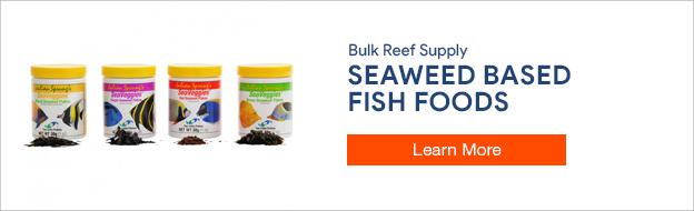 Seaweed based fish foods