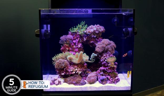 Red Sea E170 Aquarium