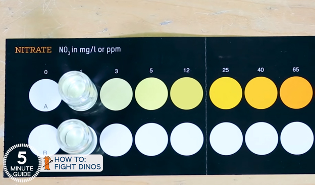 Nitrate Test Kit Results