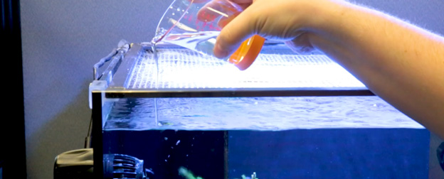 Dosing additives into a reef tank
