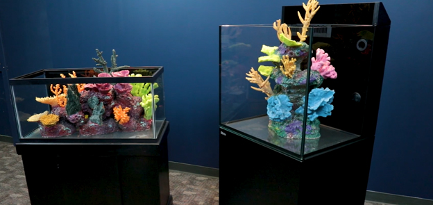 40 breeder and Red Sea E-170 aquarium