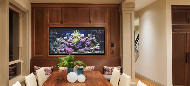 Large reef tank in dining room
