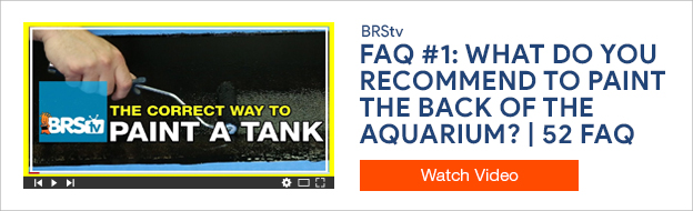 How to paint an aquarium background video