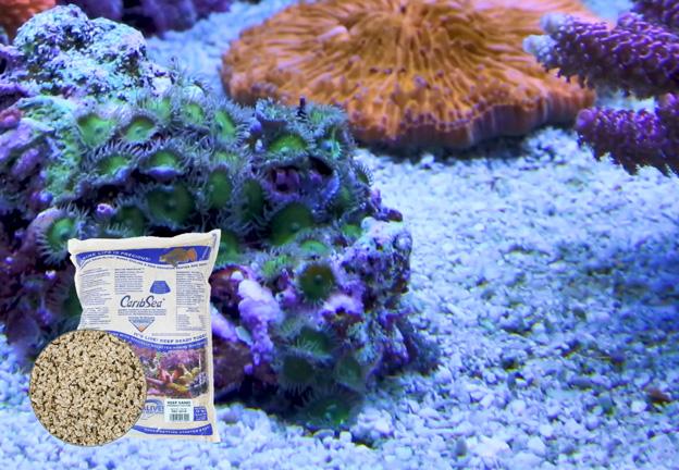 Caribsea Special Grade Reef Sand