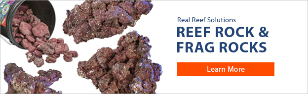 Real Reef Rock and Frag Rocks