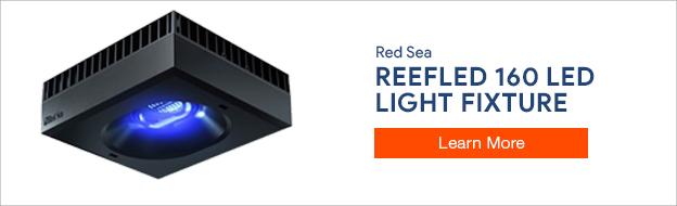 Red Sea ReefLED 16 LED Light Fixture