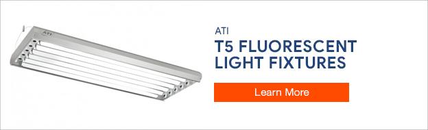 ATI T5 Lighting