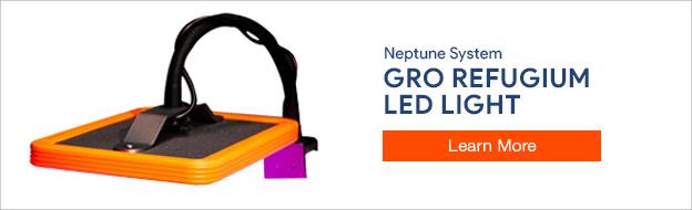 Neptune Systems GRO LED Refugium Light
