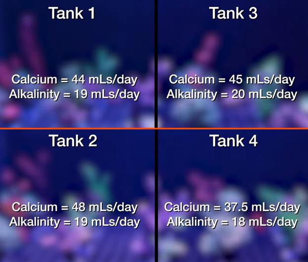 major element consumption at 120 days