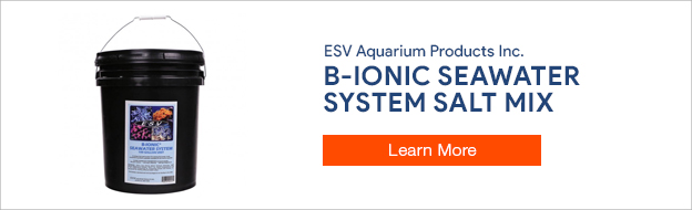 ESV B-ionic Seawater System