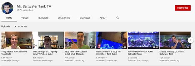 Mr. Saltwater Tank YouTube