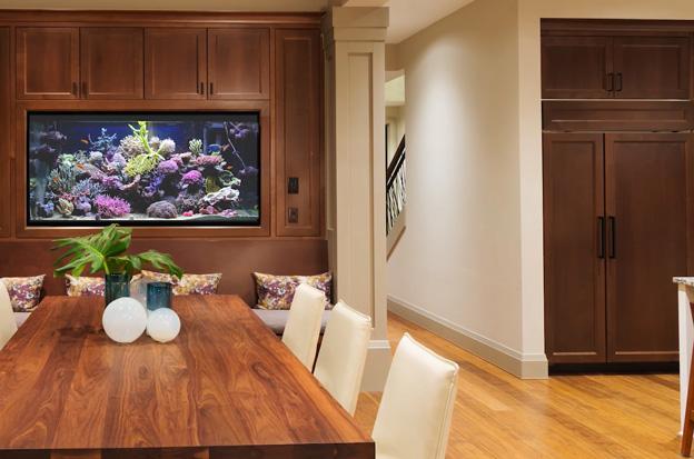 Reef Tank in dining room