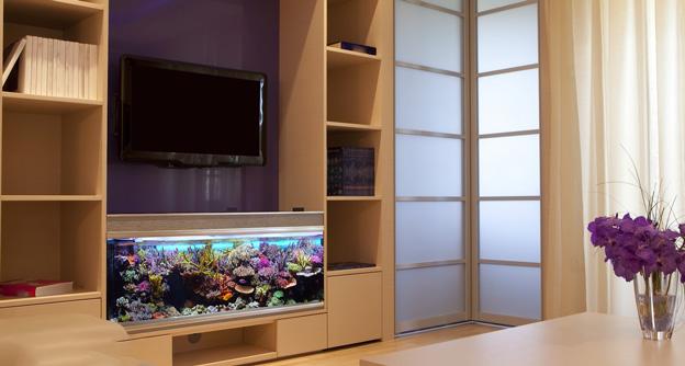 Reef tank in TV room