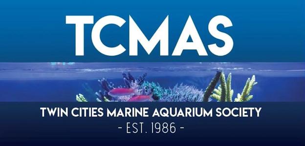 TCMAS Forum