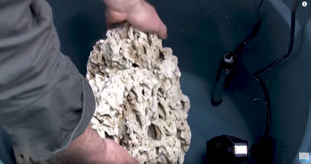 Dry rock going into a brute trash can for curing