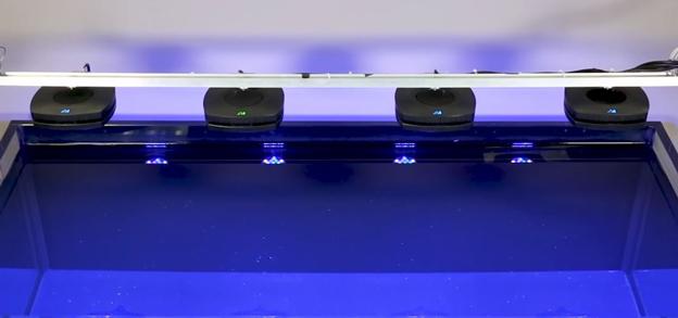 AI Prime LEDs mounted on a light bar