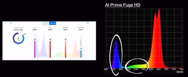 Spectrum Graph 2