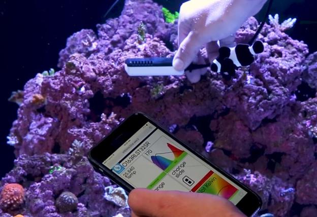 Using the Seneye Reef Monitor on a smart phone