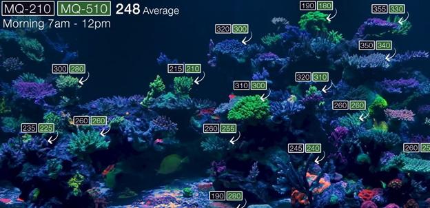 WWC PAR readings from 900 gallon display tank