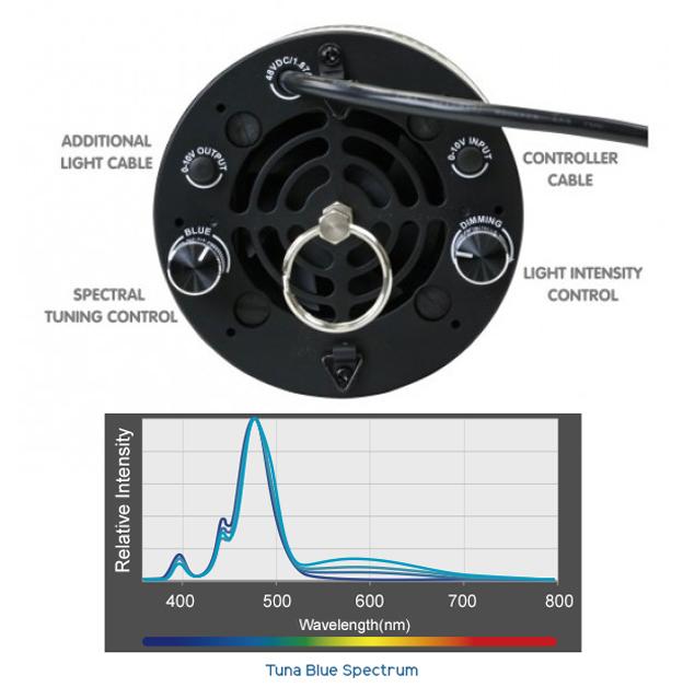 Kessil Controls and Tuna Blue Spectrum