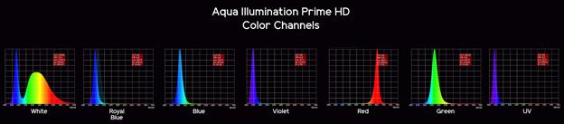 AI Prime Spectrum Graph