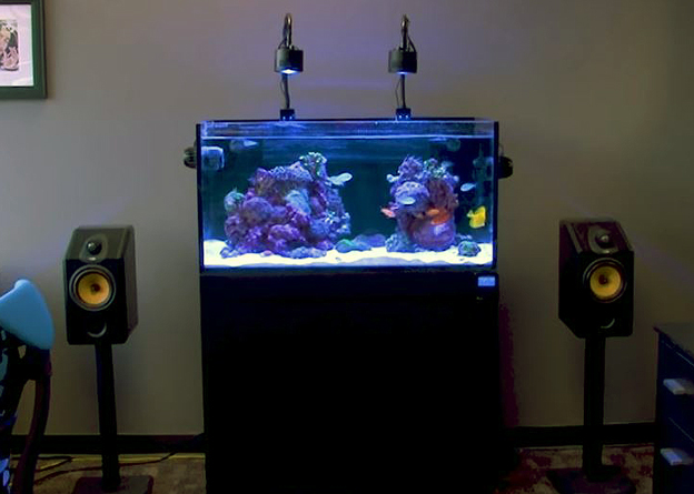 Kessil A360w LEDs over a reef tank