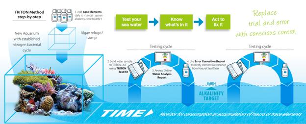 The Triton Method Diagram