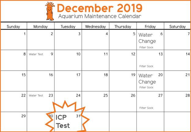 Aquarium Maintenance calendar