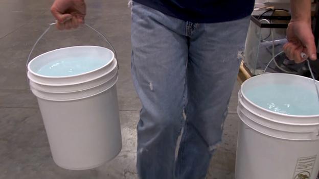 Water change buckets