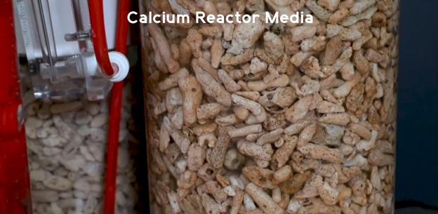 Calcium Reactor Media close up