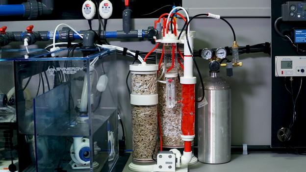 Vertex calcium reactor on synergy reef sump