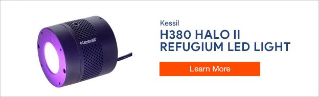 Kessil H380 Halo LED