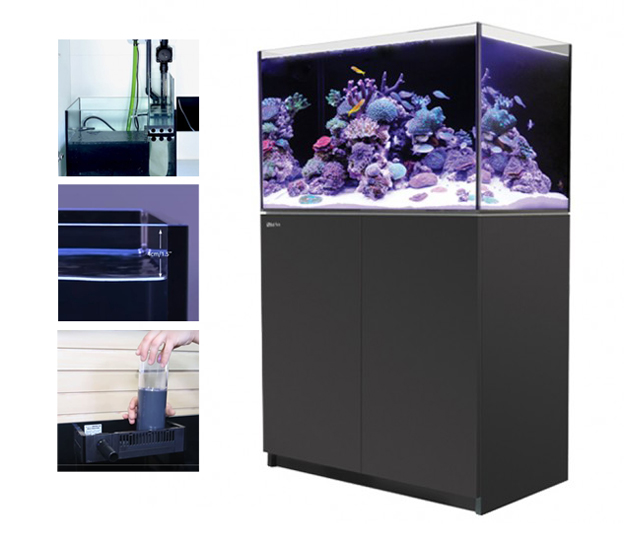 Red Sea Reefer 250 Features