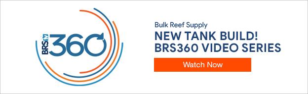 BRS360 Video Series