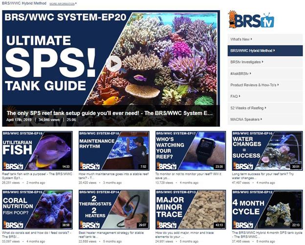 BRS/WWC Hybrid Video Series
