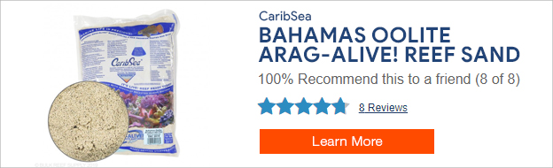 Caribsea Oolite Sand
