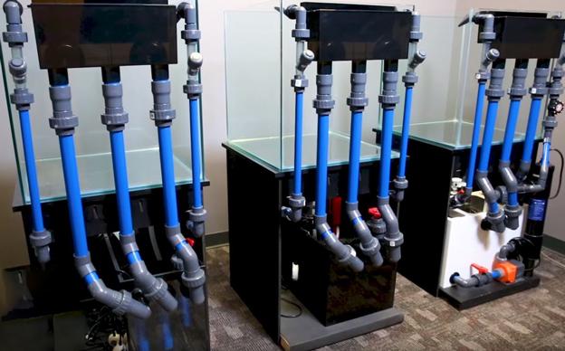 ULM Tanks plumbing set ups