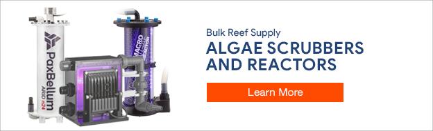 Algae Reactors and Scrubbers